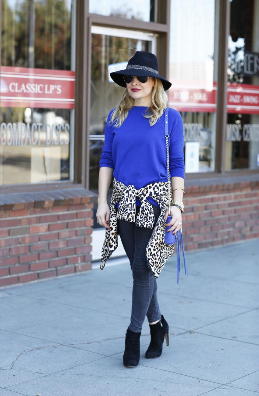 blue leopard 1